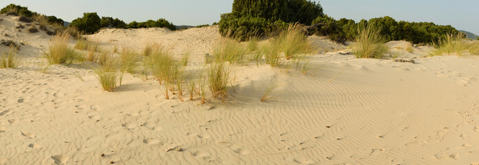 Sardegna, Chia, dune di sabbia di Su Giudeu
