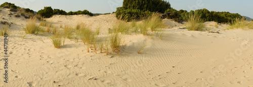 Fototapeten,sanddünen,sanddünen,sand,ende