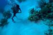 Diver with fine boyancy, Cuba