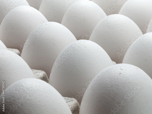 Large eggs of a hen.