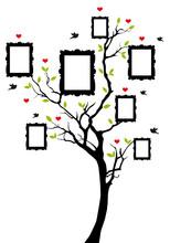 Drzewo genealogiczne z ramkami, wektor