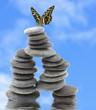 papillon sur empilement de galets