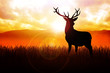 Silhouette illustration of a deer on meadow during sunrise