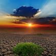 dramatic sunset over barren earth