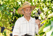 Senior viticulturist