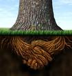 Leinwanddruck Bild - Strong Business Roots