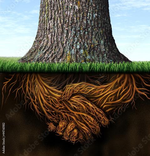 Leinwanddruck Bild Strong Business Roots