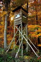 Ein Hochsitz in einem Herbstwald