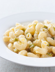 macaroni dish with zucchini and parmesan