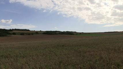 au galop dans les champs