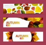 Fototapety Fresh natural fall vector horizontal banners