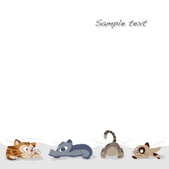 background kittens