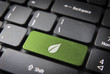 Green leaf keyboard key, environment background