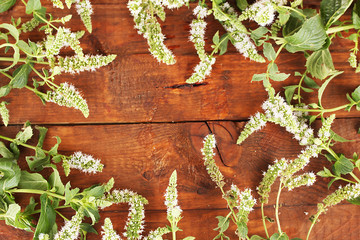 Fresh mint on wooden background close-up