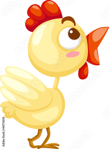 Cute chicken vector Illustration
