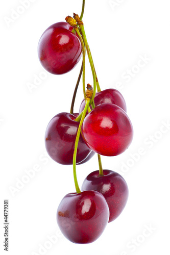 Zdjęcia na płótnie, fototapety na wymiar, obrazy na ścianę : Delicious Cherries