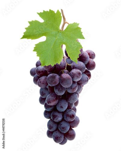 Rote Weintrauben - 44792138