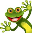merry green frog