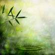 Misty rain in the bamboo forest. Abstract natural backgrounds