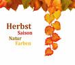 Herbstsaison Hintergrund für Ihr Projekt