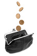 Coins Falling into Change Purse Isolated