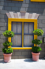 Window and flower arrangement,