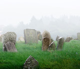Cemetery with a fog