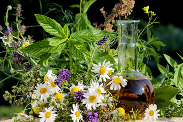 Homöopathie mit Kräutern, gesunde Küche