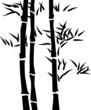 Fototapeten,pflanze,blatt,silhouette,bambus