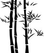 Fototapeten,pflanze,leaf,silhouette,bambus