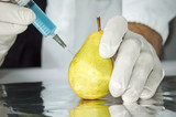 Yellow pear in genetic engineering laboratory, gmo food concept poster