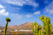 Lanzarote Yaiza with cactus and mountains