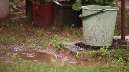 Rain Drops Over Bog