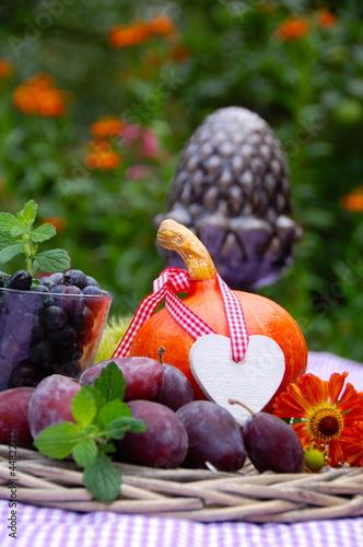 Herbsternte Obst und Gemüse - 44822712