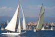 Classic yacht regatta