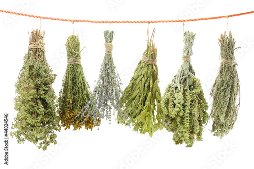 Variety of dried herbs hanging on a rope