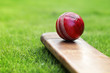 Cricket bat and ball - 44828508