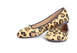 Animal Print Womens Flat Shoes Isolated on White