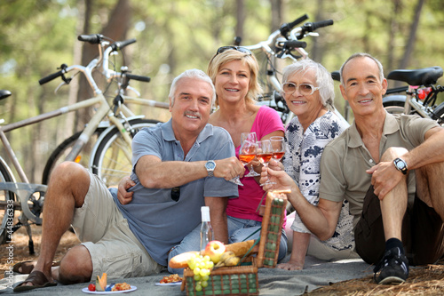 canvas print picture four senior people toasting at picnic