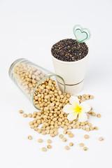 raw soy bean and black sesame