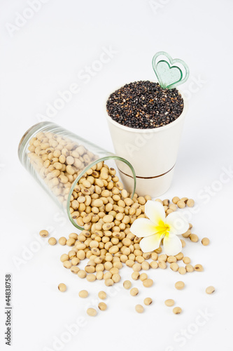 raw soy bean and black sesame