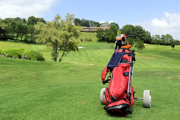 sacca golf con ruote