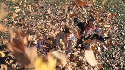 Deep in leaves