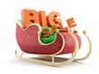 Santas Sleigh big sale