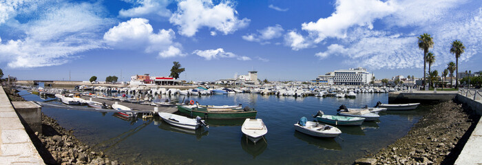 marina with recreational boats