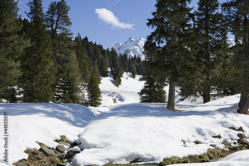 View of snow covered mountains and woods