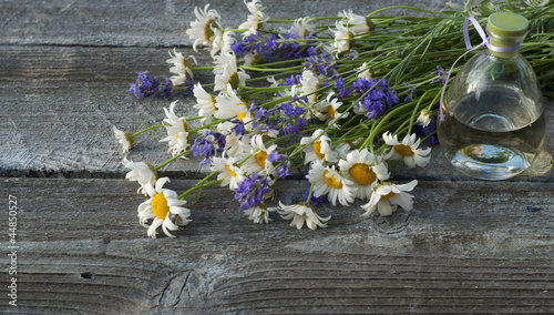 Bottle of essential oil, lavender and chamomile flowers