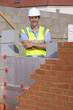 Portrait of smiling bricklayer with arms crossed behind brick wall
