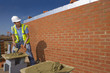 Bricklayer applying mortar to brick with trowel in front of wall