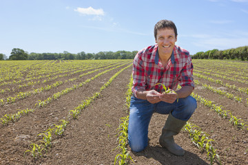 Portrait of smiling farmer holding corn seedling in field